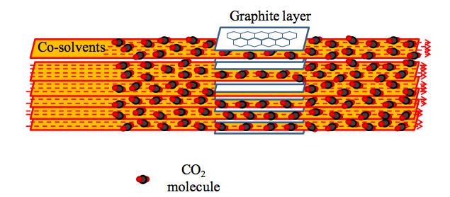Wattanaprayoon Supercritical Carbon Dioxide