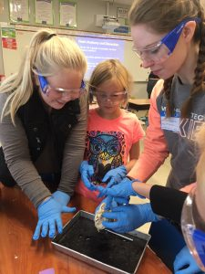 Students learning heart anatomy through a dissection.