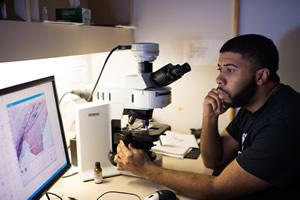 Biomedical Engineering student looking at a computer screen