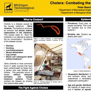 Cholera Poster Detail