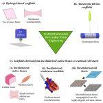 Figure: Scaffold fabrication strategies for cardiac patch engineering