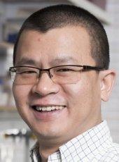 Dr. Xiaochu Ding