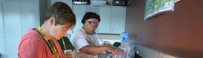Teachers in the Lab