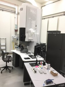 Michigan Tech's FEI 200kV Titan Themis Scanning Transmission Electron Microscope (S-TEM) positions Michigan Tech faculty on the leading edge of new imaging capability for structural and chemical analysis at the nano-scale.