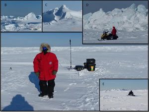 Research Sites in the Arctic showing a collage of four snowy locations with researchers and equipment