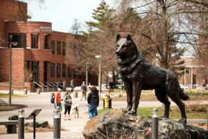 Husky Statue with people in the background