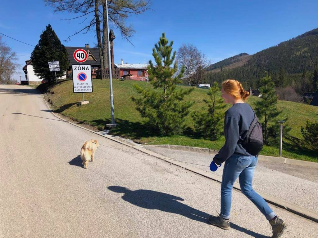 Kendall Welling walking with a dog down a street in Slovakia