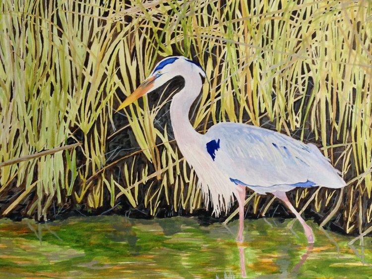 Blue Heron, 2016, Gary Johnson