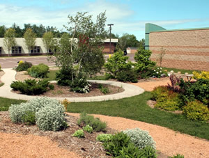 View of part of the garden and pathways near the museum.