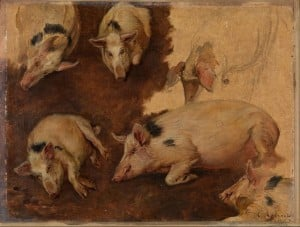 Study of Six Pigs, by Anders Askevold
