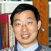 Qingping Feng