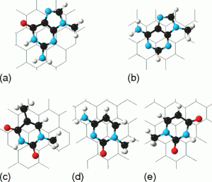 Physisorption of Nucleobases on Graphene