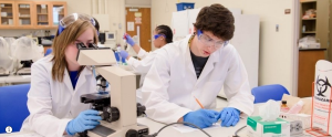 Students work in a lab looking in microscope, and at chemicals taking measurements in lab garb