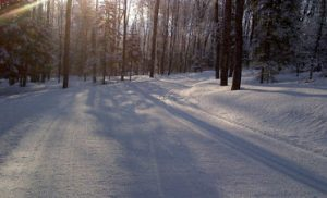 WinterTrails