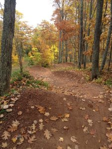 Trails Fall2