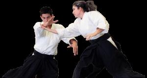 aikido-adult