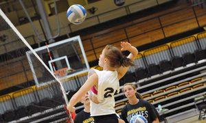volleyball-all-skills