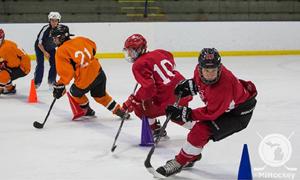Power Skating Hockey Clinic March 1 3 Michigan Tech Recreation