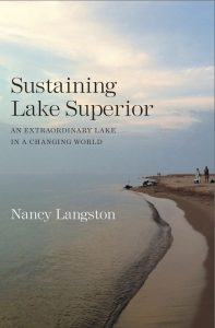 Sustaining Lake Superior: An Extraordinary Lake in a Changing World, Nancy Langston. People on the Lake Superior Beach