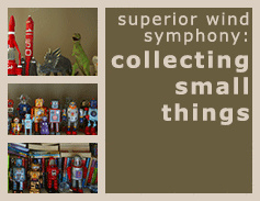 SWS Collecting Small Things