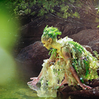 Fairy bending down and running hand through water in a forest