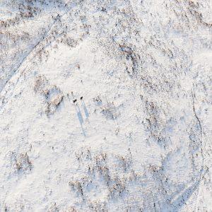 Aerial of deer in winter