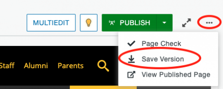 Save Version option in the More Actions menu of the page.