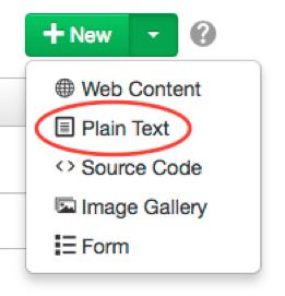 plain-text-asset
