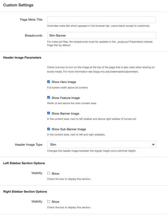 Screenshot of the Custom Settings section of the Page Parameters.