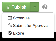 Dropdown menu of the publish button.