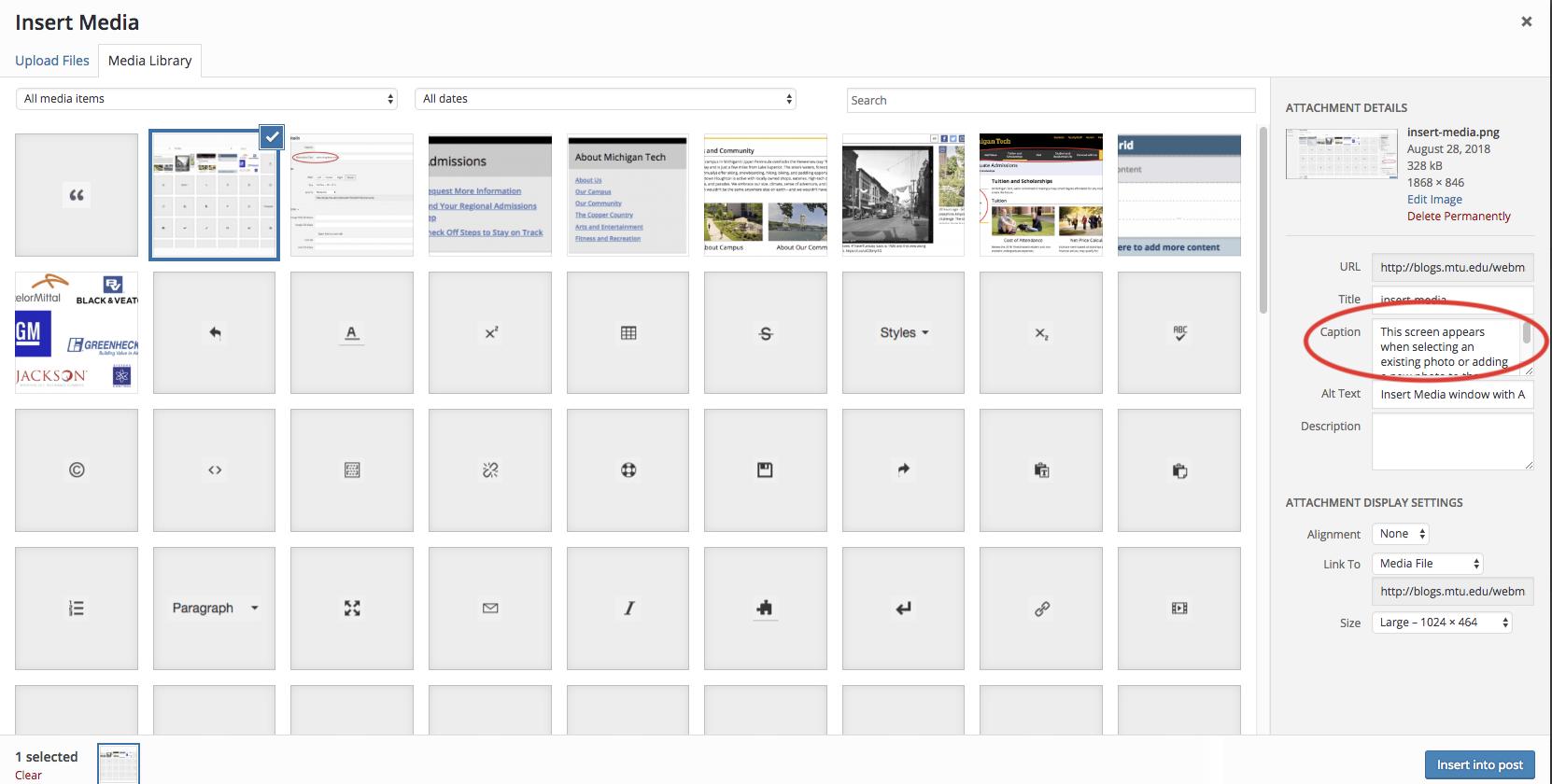 Image Captions in Blog Posts | Webmaster's Blog