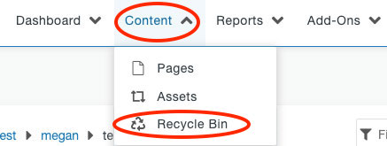 Recycle Bin option in the Content drop-down menu in the Global Navigation Bar.